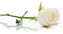 funérailles degauque lessines